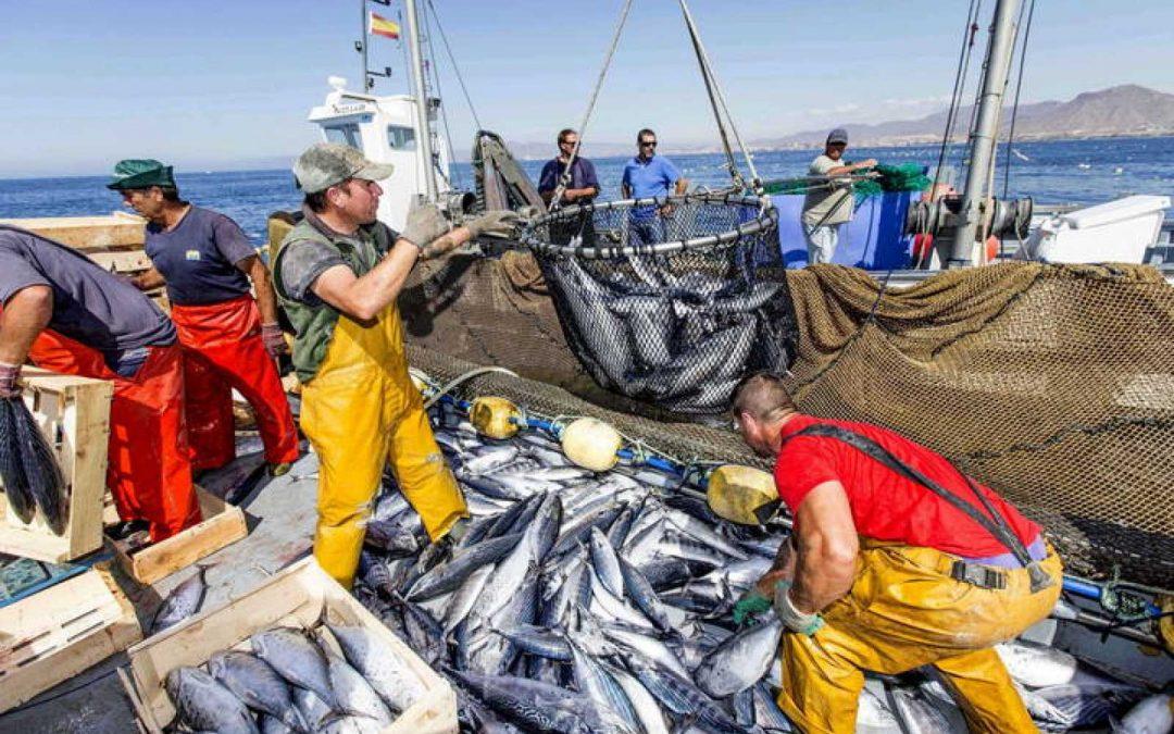 Los barcos pesqueros están fuertemente impactados por el coronavirus